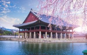 Нужна ли виза в Южную Корею